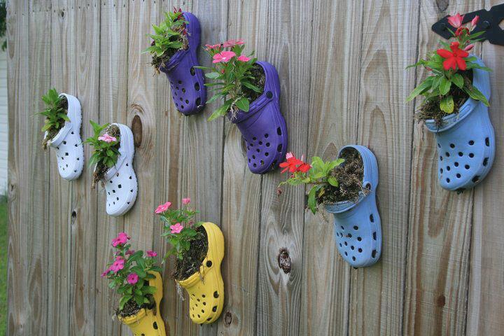 sandalet çiçeklik